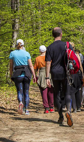 Group of People Walking Trail